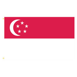 Singapore Rectangle Flags
