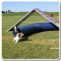 20' Dog Agility Tunnel