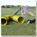 10' Dog Agility Tunnel