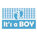 It's a Boy (Plaid) Rectangle Flags